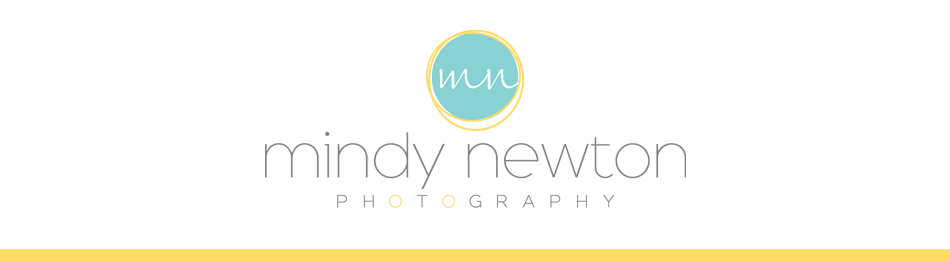 Mindy Newton Photography:Sacramento Family Photographer logo